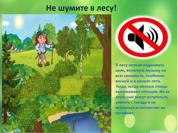 Картинка нельзя шуметь в лесу для детей