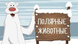 ПОЛЯРНЫЕ ЖИВОТНЫЕ! Развивающие мультики на русском для самых маленьких 2017 Учим животных для детей