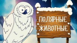 ПОЛЯРНЫЕ ЖИВОТНЫЕ! Учим животных - развивающие мультики для детей на русском